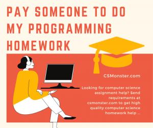 Pay Someone To Do My Programming Homework